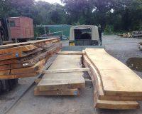 Những thông tin cơ bản về gỗ sồi nguyên tấm giá rẻ
