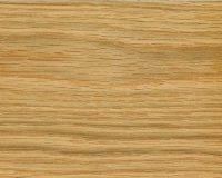 Gỗ sồi trắng là gì? Đặc điểm và ứng dụng cụ thể của gỗ sồi trắng